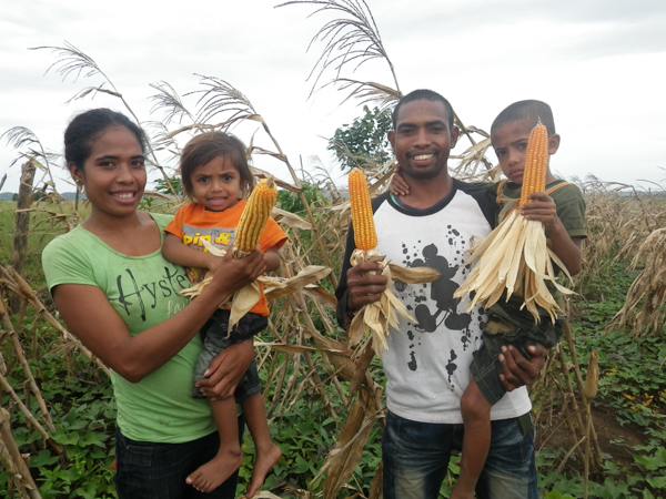 Lino and his family are part of a commercial seed producer group in Los Palos, growing and selling quality Sele seed © Unknown/Seeds of Life